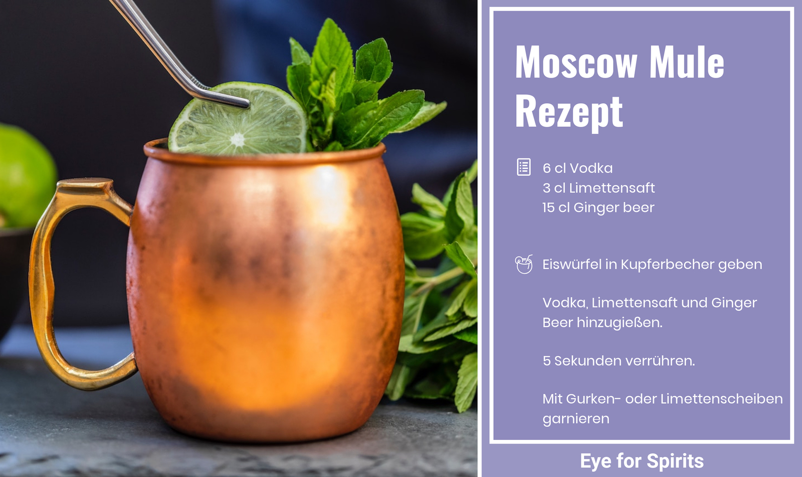 moscow mule mit diesem rezept perfekt zubereiten eye for spirits. Black Bedroom Furniture Sets. Home Design Ideas